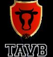 Thônes Aravis Volleyball
